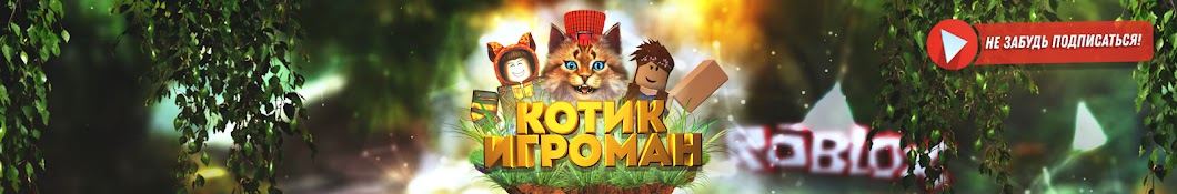 Котик Игроман
