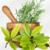 Natural Healing Guides, Self Care & Gardening Tips Avatar