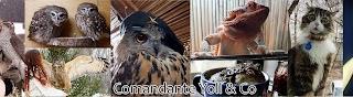 Yoll the Eagle-Owl
