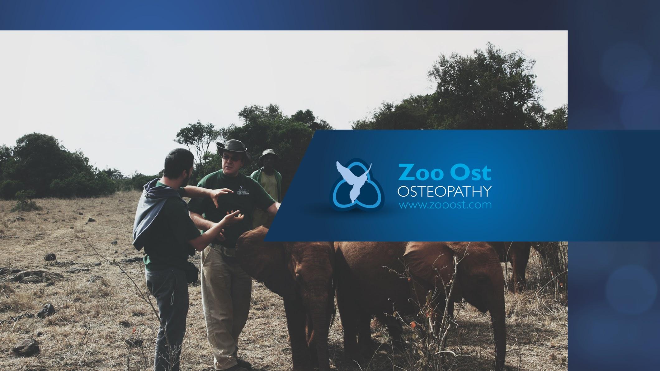 Zoo Ost Ltd