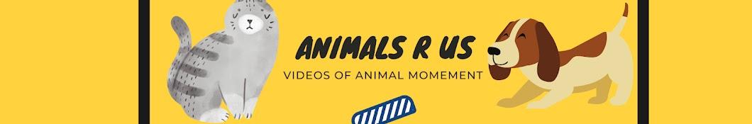 Animal Videos R Us - Dubl B