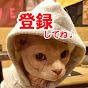 【リアル犬猫保護活動】にゃいるどはーと