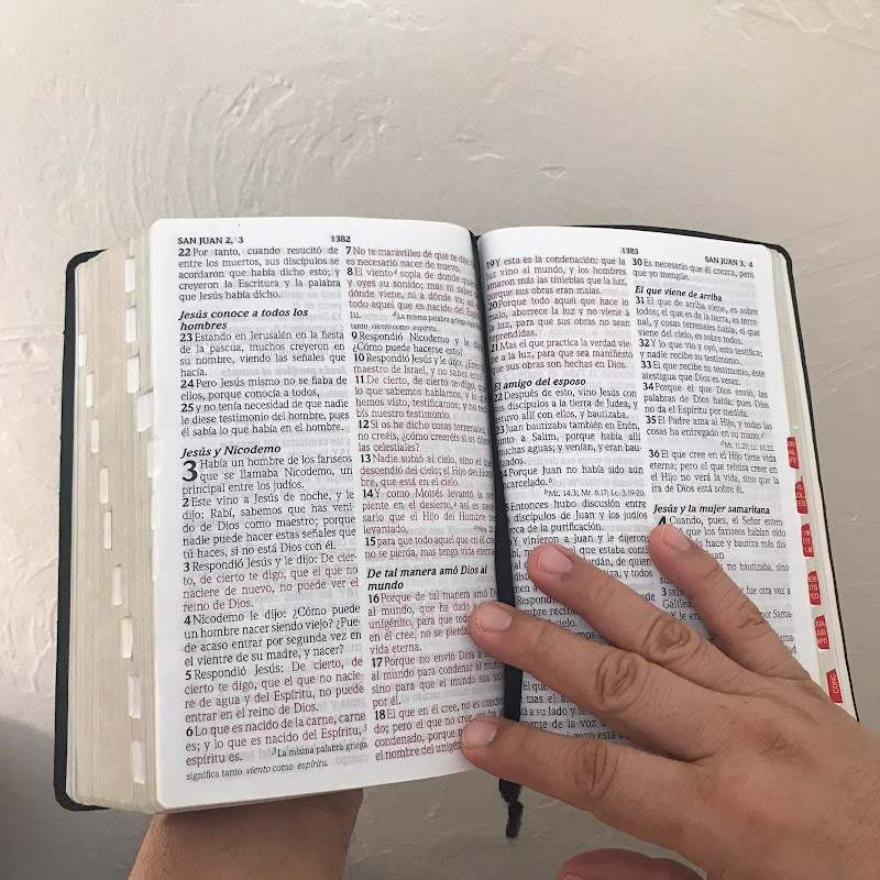Obediencia a la palabra
