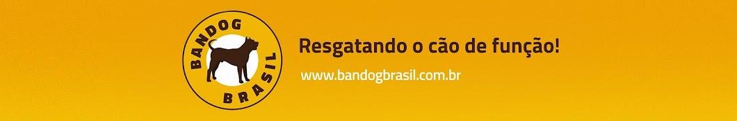 Bandog Brasil - Adestramento de cães YouTube channel avatar