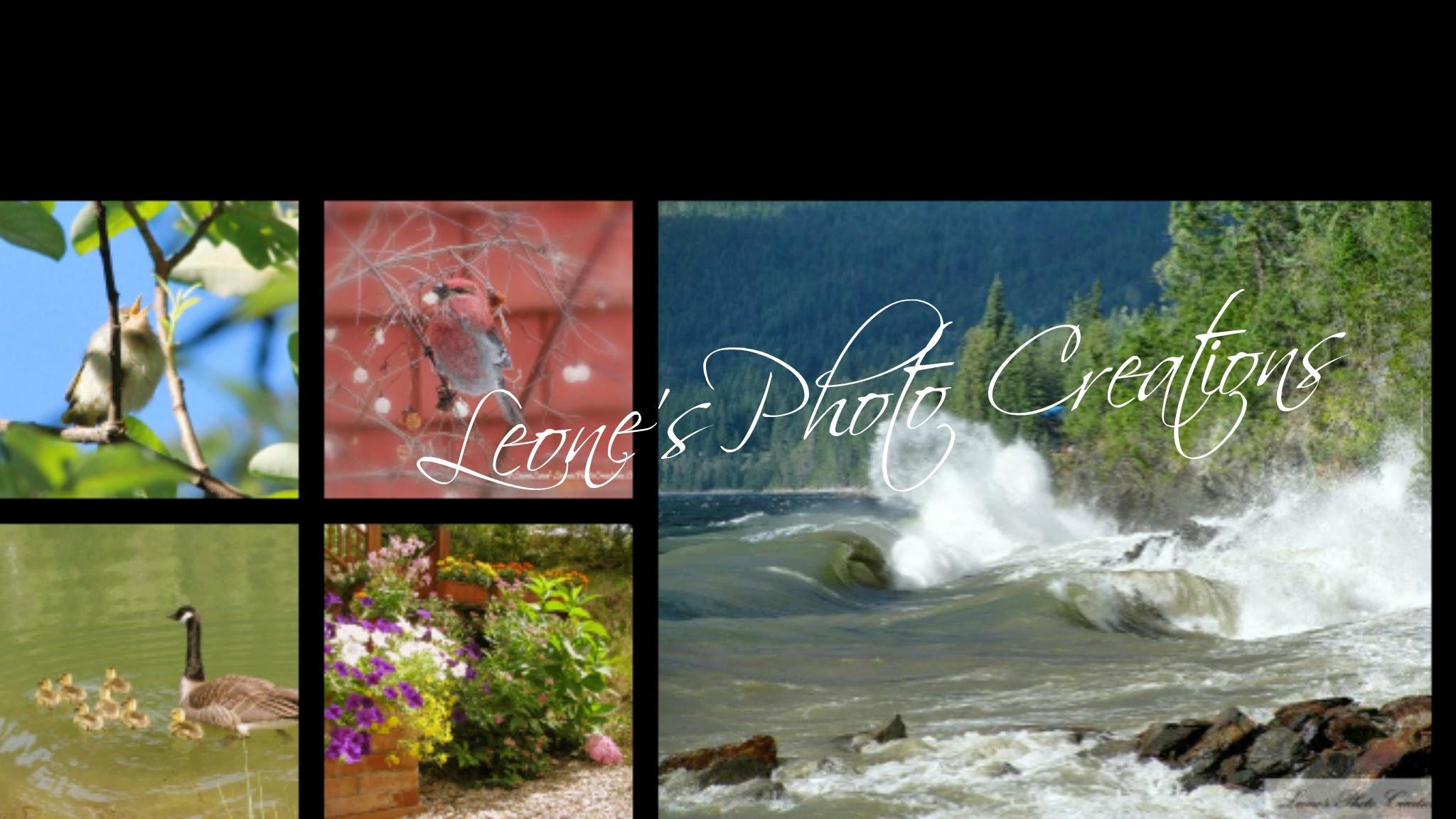 Leones Photo Creations