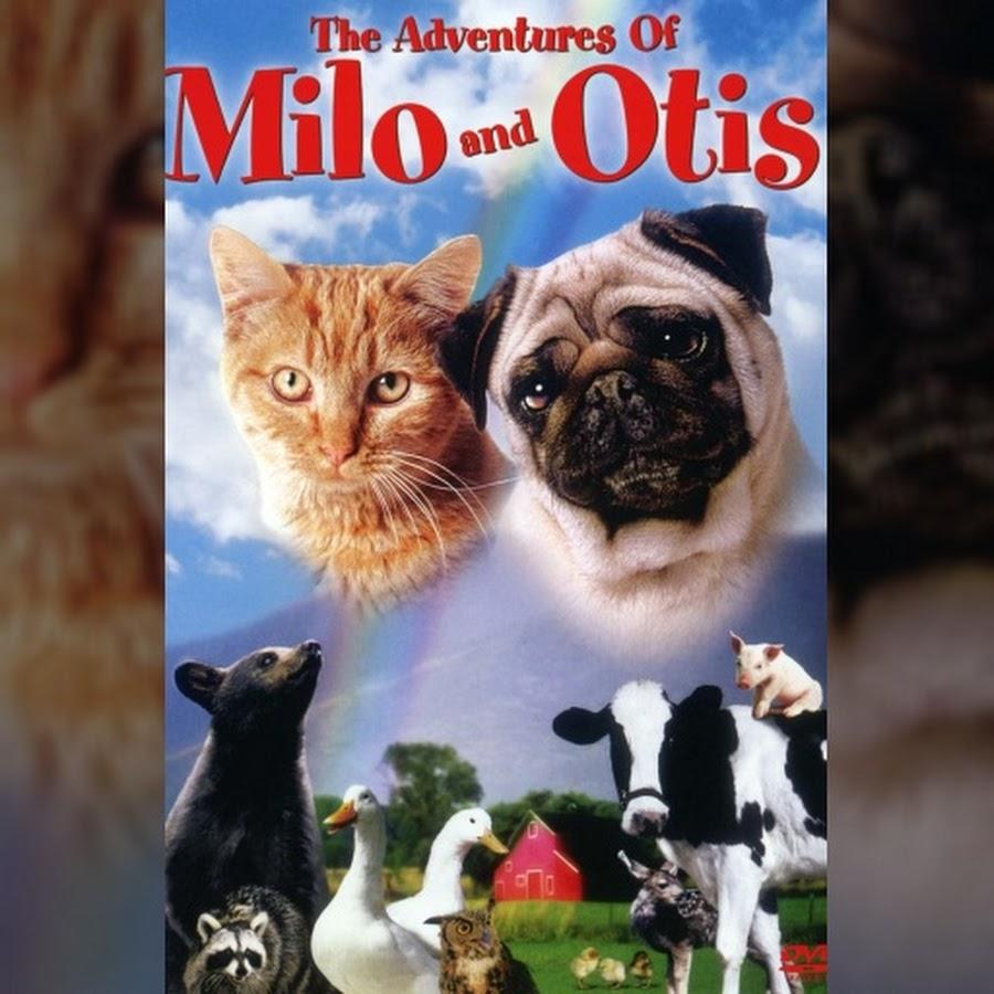 The Adventures Of Milo And Otis Topic Youtube