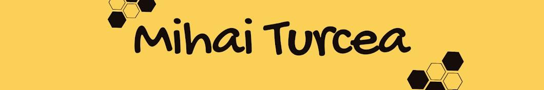 Mihai Turcea Banner