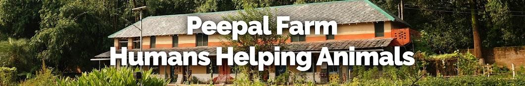 Peepal Farm Banner