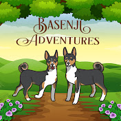 Basenji Adventures