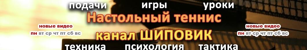 Настольный теннис Шиповик баннер