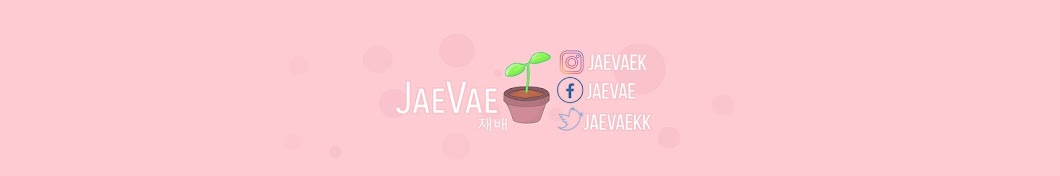 JaeVae