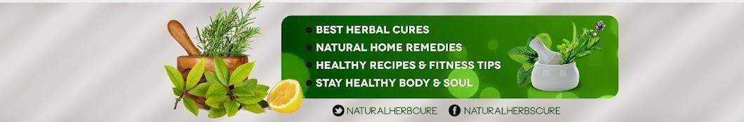 Natural Healing Guides, Self Care & Gardening Tips Banner