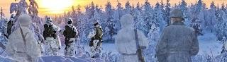 Puolustusvoimat - Försvarsmakten - The Finnish Defence Forces