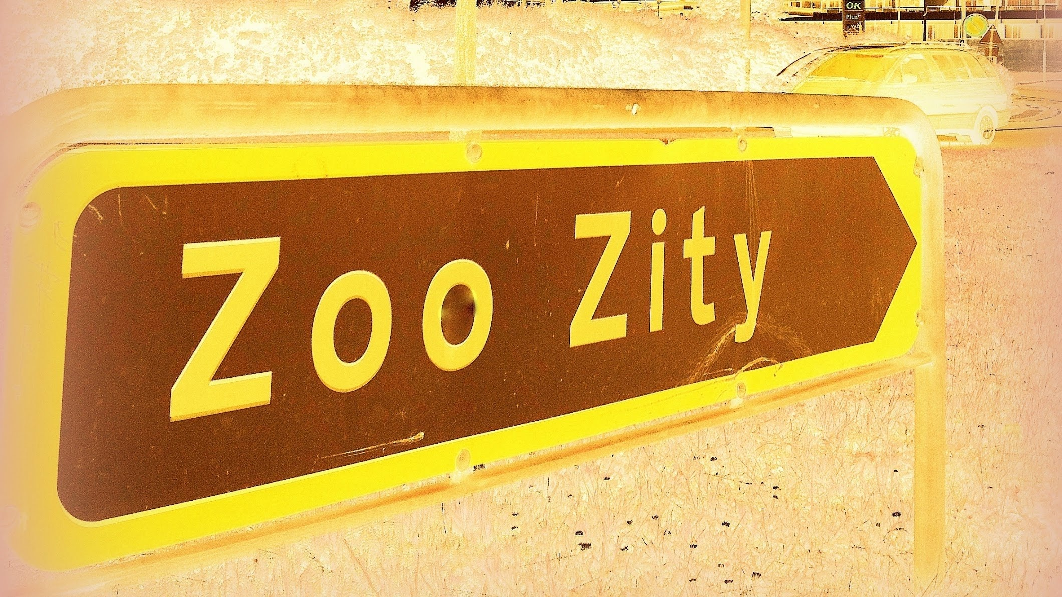 Pj Madly Zoo Zitycph Youtube