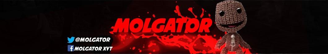 Molgator X YouTube channel avatar