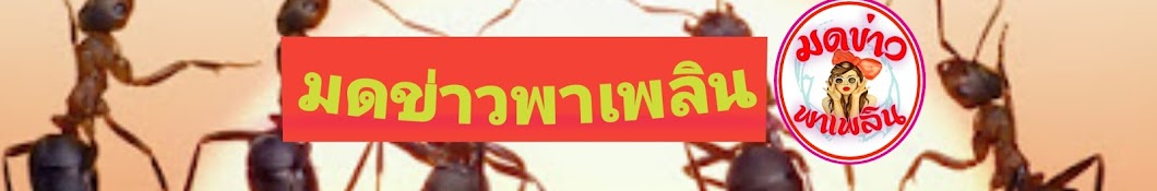 มดข่าว พาเพลิน
