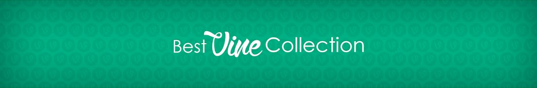 Best Vine Collection __ ( Best Vines Compilations ) - Thủ