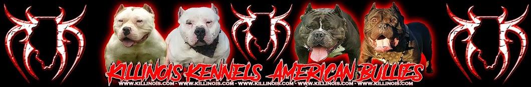 KILLINOIS KENNELS Banner