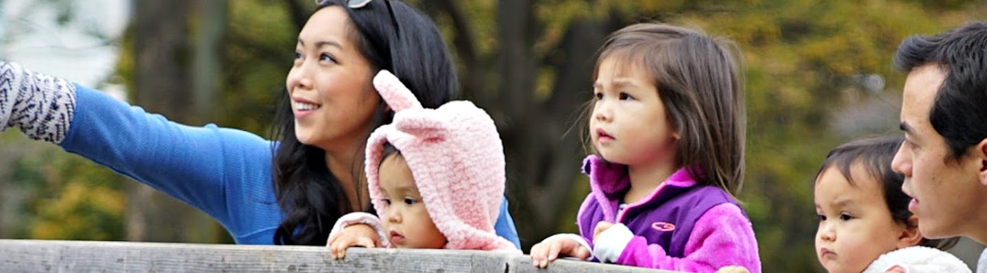 itsJudysLife's Cover Image
