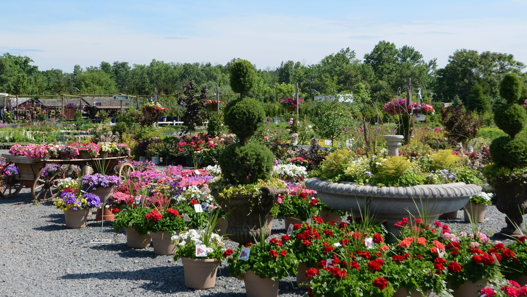 Bountiful Gardens