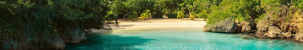 Visit Jamaica Banner