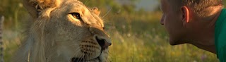Парк львов Тайган Taigan Lions Park
