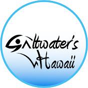 Saltwaters Hawai'i Avatar