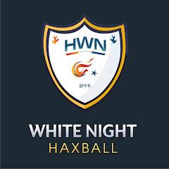 HaxBall White Night