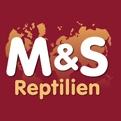 ReptilTV