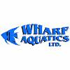Wharf Aquatics Ltd