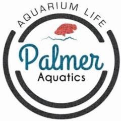 Palmer Aquatics
