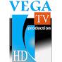 Vega Produkcija