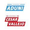 Academias Aduni y César Vallejo