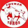 Fuerza Toros
