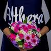 Ythera