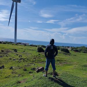 Tan Chi