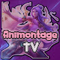 Animontage TV (animontage-tv)