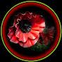 Большие цветы и
