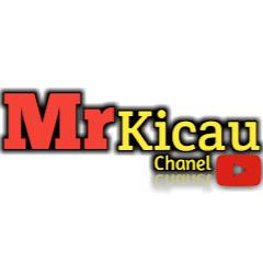 Mr Kicau