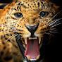 I Predator