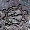 RF Turtle