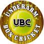 Underarm Box Cricket