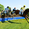 The Queen's Cup Steeplechase