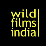 WildFilmsIndia Net Worth