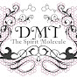 DMT: The Spirit