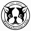 iBostonTerrier.com