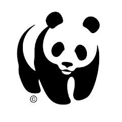 planet : panda