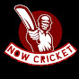 Now cricket
