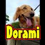 dorami0024
