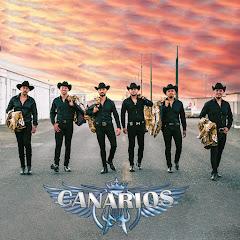 Canarios De Michoacan